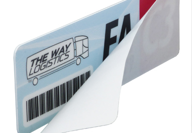 Windshield Labels
